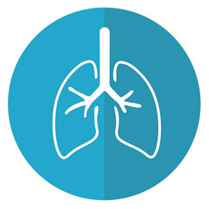 Picture for category Liver & Lung