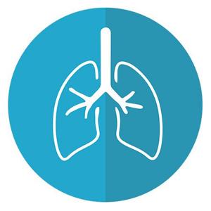 分类图片 护肝清肺